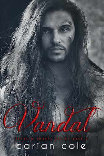Vandal cover